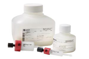 Dextrin Sepharose high performance