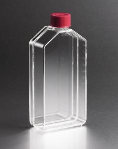 Cell culture flasks
