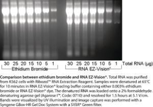 Loading buffer, RNA EZ-Vision®