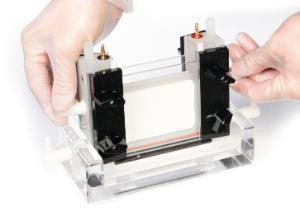 PerfectBlue dual gel system, Twin S